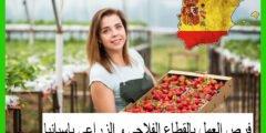 فرص العمل بالقطاع الفلاحي و الزراعي باسبانيا