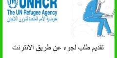 تقديم طلب لجوء عن طريق الانترنت
